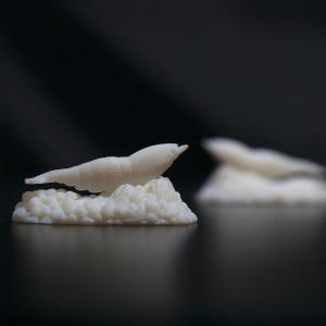 3D Printing 立體打印基礎課程- 晚上班- 日常工具篇
