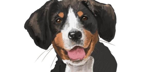 iPad 寵物繪畫技巧體驗班